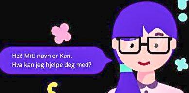 KARI: Dette er Kommune-Kari.