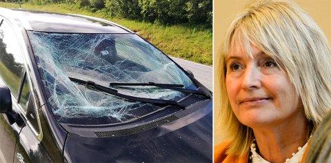 Tove-Lise Torve kjørte lørdag formiddag på en elg på Eidsøra. Til alt hell kom ikke elgen inn gjennom frontruta.