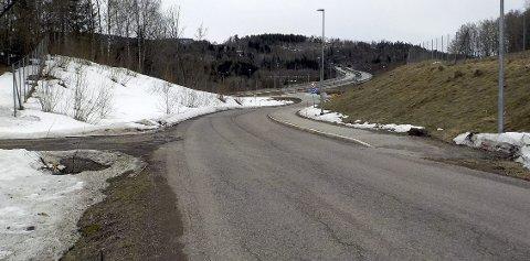 VEST OG ØST: Den vestvendte veiskråningen har fått vår. Den østvendte må vente litt. Foto: Lars Ivar Hordnes