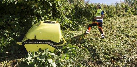 Krattklipper: Øivind Lie i Servicemesteren prøver ut klipperen i GLT-avfall fredag.