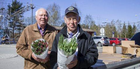 STOR INNSATS: Harald Eng (til venstre) og Thron-Peter Alm fra Oppegård var to av de frivillige som hentet tulipaner før fjorårets aksjon. FOTO: ESKILD GAUSEMEL BERGE