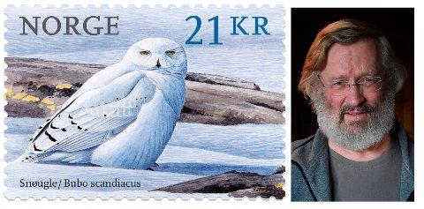 Verdens vakreste: Frimerket med maleriet til Viggo Ree av en snøugle på er kåret til verdens vakreste frimerke i 2018.