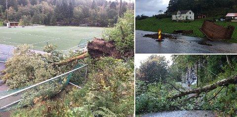Resultatet av stormens herjinger var lett å finne torsdag.