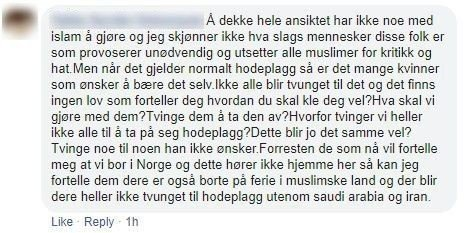 SVARER: Denne brukeren valgte å svare Jon Helgheim i kommentarfeltet under posten hans.  Foto: Skjermdump/Facebook