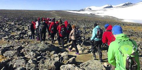 PÅ TUR: Her gikk  vi på vei til fjelltoppen, med  sekken på ryggen som innholder mat, drikke og ekstra klær (sokker, undertøy).Alle foto: Alaa talli