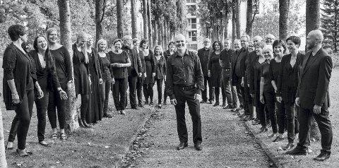 I TOSPANN: Collegium Vocale (bildet) skal synge sammen med koret ØremaZZørene. Foto: Ann-Helen Moen Nannestad