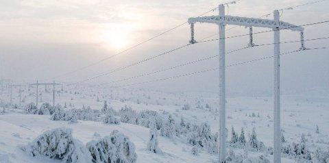 I hele ni timer torsdag er strømprisen alene på over én krone per kWh. I tillegg kommer nettleie.