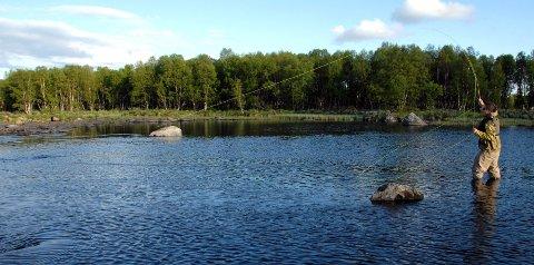 GOD FISKEELV: Tisleia er ei god fiskeelv. Nå kan fiskerne bli kvitt høyspentlinja som krysser elva. ARKIVBILDE