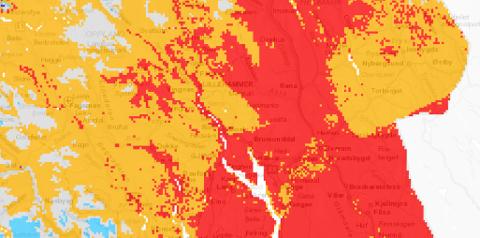 LAVT: Grunnvannet er svært lavt mange steder i Hedmark akkurat nå. Dette er situasjonen 30. juli.