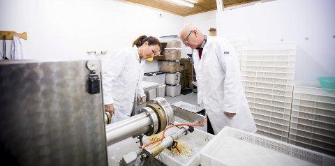 Erfarne pastamakere: Camilla og Richard Schiørn har produsert pasta på Tomt gård i over 10 år. Det hele begynte med en studietur til Tyskland. ALLE FOTO: LISBETH LUND ANDRESEN