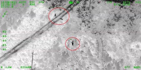 En mann i 30-årene unndro seg kontroll på E6 ved Jessheim 19. juni. Mannen ble til slutt fanget opp av politihelikopteret da han forsøkte å skjule seg i terrenget. På bildet kan man se øyeblikket hundepatruljen er i ferd med å lokalisere mannen.