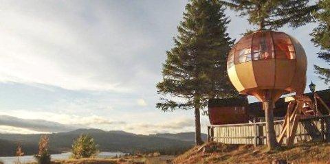 TRETOPPHYTTE: Denne hytta er tenkt plassert i et tre på Skinnesmoen i tilknytning til ei utleiehytte, en badstue og en lavvo.