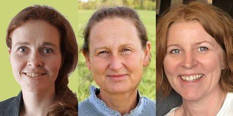 Tina Gerdts-Andresen, Helén Graarud og Marina Sletten, Høgskolen i Østfold
