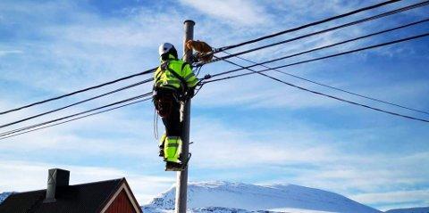 REDNINGSMANN: I Havøysund måtte læring Anders B. Olsen berge en katt ned for en kunde.