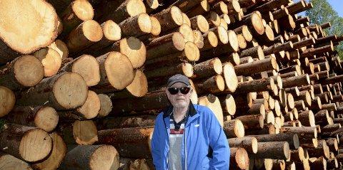 Reidar Krafft foran en av de store tømmerstablene langs veien.