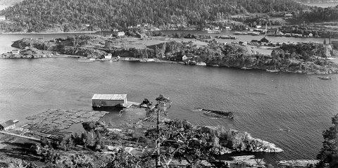 1:: Utsikt fra Storkollen. Nede ved Nepa i Rørvik sees vraket av «Aljuka». Bildet er fra før krigen .2: Maleri av barken «Aljuka» under fulle seil 3: «Aljuka» ligger i Rørvik. 4: Dekor som prydet seilskuta «Aljuka» 5: Alex Andersen har tatt vare på og restaurert baugdekoren som en gang prydet «Aljuka». 6: Baugdekor fra seilskuta «Aljuka».