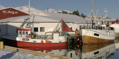 Bli med inn på fiskebruket Nic. Haug på Ballstad.
