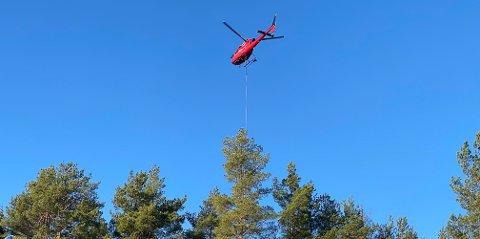 FLYS INN: Utbyggingen tar hensyn til skogen.