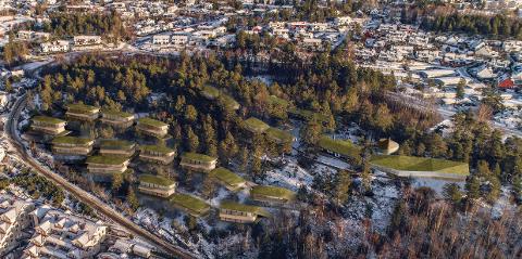SOLÅSEN: Slik ser arkitektene for seg boligprosjektet som Peterstiftelsen gjerne vil utvikle på Solåsen.