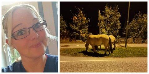 GOD TID: Susanne Merkesdal Gåsemyr vart bekymra då ho såg hestane som spaserte nedover hovudvegen. Dei på si side såg ut til å ta seg god tid, og stoppa for eit lite måltid.