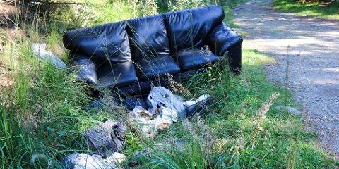 Dette er nylig blitt satt igjen i Hålandskogen. Skogvokter Johnny Hadland forteller at dumping er et stort problem i skogen.
