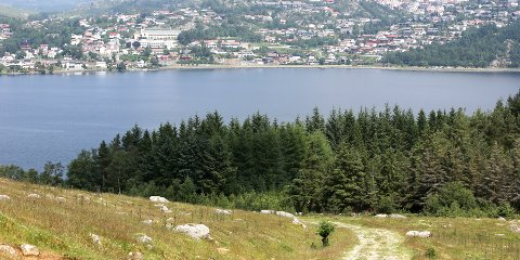 Søndag arrangeres det nissetur i Neseskogen (arkivfoto: Geir Einarsen).