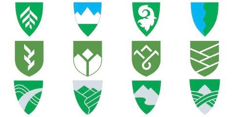 FORSLAGENE SAMLET: Her er de 12 forslagene til fylkesvåpen for Innlandet fylkeskommune, som politikerne nå har å velge mellom. Det er reklamebyråene Anti (de fire øverste), Ferskvann (de fire i midten) og Krible (de fire nederste) som har laget dem.