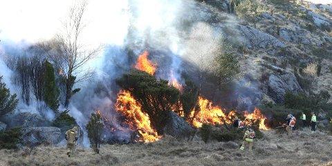 Dette bildet ble tatt da det brant i Hetlandsvågen 13. april.