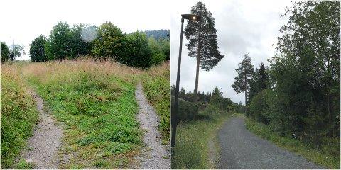 Til venstre: Mellom Langseth og Årettaelva i Søre Ål er det nesten så stien forsvinner under ugress og kratt. Til høyre: Lysløypa over Maihaugen, også del av Tverrløypa, er av en helt annen standard.