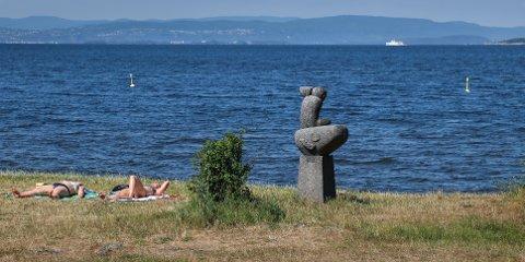 TOMT HAV: «Gutt med konkylie» speider etter badeflåten utenfor Refsnesstranda. Den kommer om en uke.