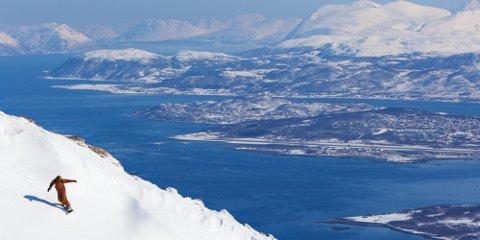 FLERTALL FOR: Arctic Center har planer om skianlegg og fjellandsby i Håkøybotn. Onsdag avgjøres saken i kommunestyret i Tromsø.. En fersk undersøkelse gjort av InFact på vegne av Nordlys viser at det er flertall i Tromsø for utbygging av Arctic Center-prosjektet.