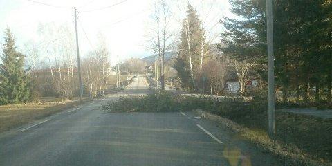 SPERRET: Dette synet møtte Kai Myhrvold da han kjørte på fylkesveg 33 sør for Skreia mandag ettermiddag.