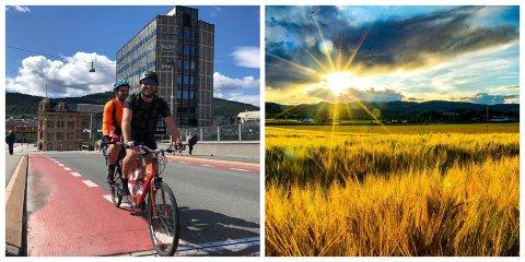Den er ikke særlig lett og ikke spesielt lett å sykle, men tandemsykkelen har ført brødreparet Torbjørn og Øyvind trygt fram til Drammen. Sande viste seg å være et fint sted å telte, forteller de.
