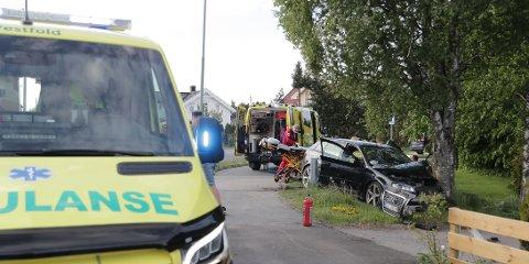 KJØRTE INN I HAGE: En bil har kjørt inn i et tre, like ved et bolighus. Foto: Geir Eriksen