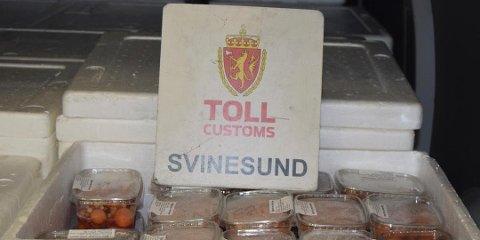 Eggstokker i bagasjen: Det er ikke hver dag Tollvesenet finner 600 eggstokker i bagasjen til smuglere. Men i januar gjorde de nettopp det. (Foto: Tollvesenet)