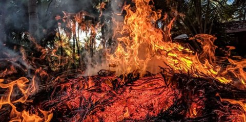 Flammene tok avgårde i heia, opplyser 110-sentralen.
