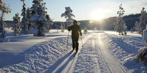 Vang kommune vil at også familier med svak økonomi skal få opplevelser som dette på Merket i Tisleidalen  i vinterferien.