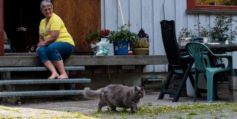Rømmer ikke: Til tross for fri adgang ut av huset, vender Kosepus alltid snuten hjem igjen til matmor.Alle Foto: Vidar Sandnes