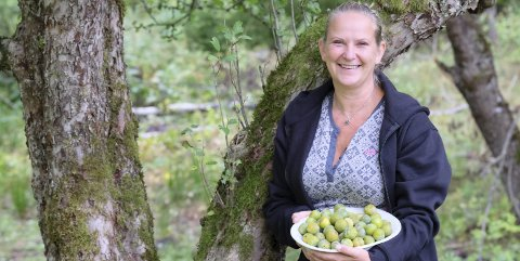 I frukthagen: Hjemme hos May Zwilgmeyer på Hantho i Tvedestrand er det både plommer, epler, stikkelsbær, solbær og blåbær i hagen. Og høner. Foto: Siri Fossing