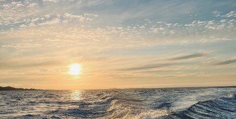 Sommer 2021. Jøa