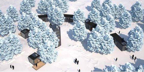 SKISSE: Slik kan det nye hytteprosjektet på Nipeto bli.  I tillegg til hyttene blir det altså et anneks, en gjestehytte og et tårn.