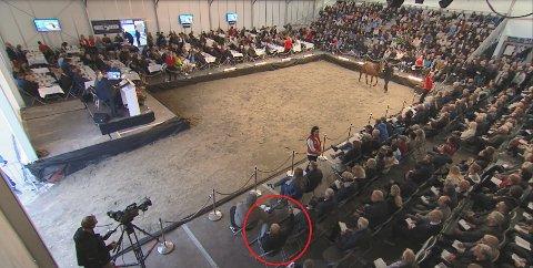 HER BYR HAN: Per Gunnar Roos (i rød ring) ble ikke sett da han løftet den høyre armen og bød på Diva Mirchi. 70-åringen brakte selv åringen til Klasseløpsauksjonen i fjor. Retten mener det ikke var grunn til å kritisere Mogreina-mannen sin handlemåte under auksjonen. SKJERMDUMP: DNT