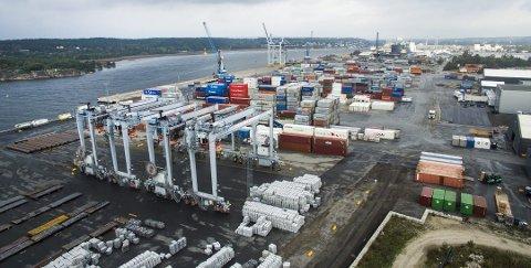 Øker kapasiteten: Borg havn har kjøpt kraner fra Oslo havn, to av de fire i forgrunnen er satt i drift for få uker siden. (Arkivfoto: Erik Hagen)