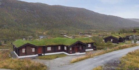 Hytte i Eidfjord: Gjekk for over fem millionar. foto: herland eiendom