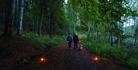Omlag 500 personer tok turen ut i Østmarka da Sarabråtens venner inviterte til fakkelvandring.