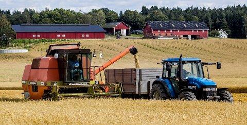 – I dag produserer vi 45 prosent av egen mat, resten importerer vi, skriver Lars Petter Bartnes. Importert mat er ikke noen selvfølge, understreker Bartnes. (Foto: Tobias Nordli)