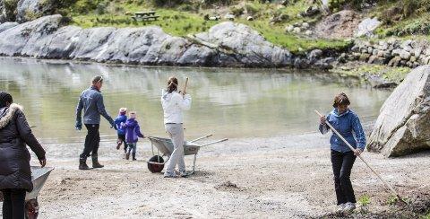 Aksjon: Fleire kommunar har den siste tida sett i gang aksjonar for å få rydda i strandsona, slik som her i Meland. Foto: Morten Sæle