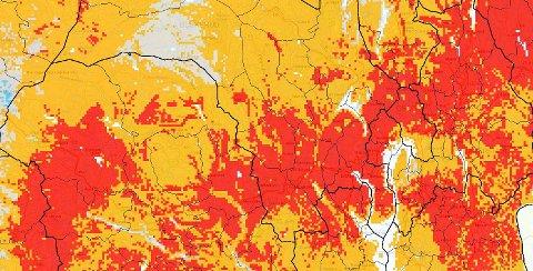 LITE VANN: De røde områdene i kartet er der grunnvansstanden er svært lav, mens de gule har lav vannstand.