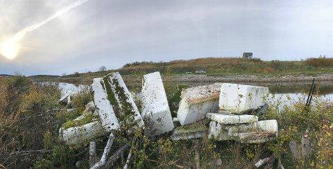 Store isoporelementer skjuler seg i sivet utenfor fugletårnet på Øra (i bakgrunnen). Her har Rune Aae samlet sammen noe.