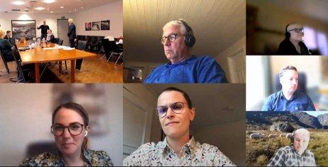 MDGs Bertha Louise Ålgård (i midten, nederst) håpte hun ville få resten av kommunestyret med seg på å utsette vedtaket om kunstgrasbane til det forelå mer informasjon om miljøkonsekvensene. Det fikk hun ikke.